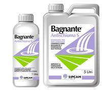 BAGNANTE 1L