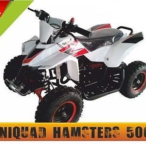 hamster50cc