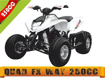 quadfxway250cc