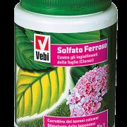 Solfato-ferroso-barattolo-1-kg-e1446560563753