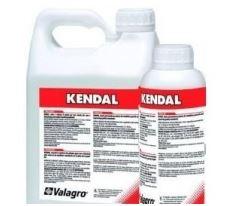 KENDAL-TE-LT-1-extra-big-6995-947
