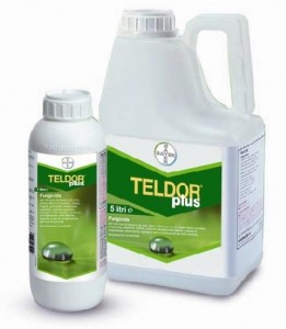 Teldor Plus Bayer fungicida liquido sclerotinie botrite monilia 1 litro